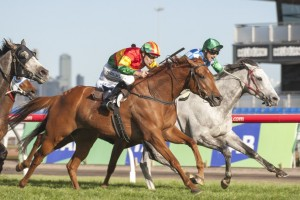 Jockey Dwayne Dunn is excited to partner Happy Trails through the 2014 Spring Racing Carnival
