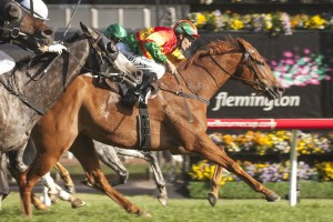 Happy Trails has been given a boost for back-to-back Turnbull Stakes wins after drawing barrier 1 for Saturday's race.