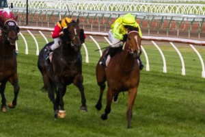 Platelet and Spirit Of Boom have both received support to win the Caulfield Sprint on Saturday.