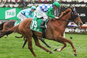 Moonlight Maid, above, is set to take on the colts and geldings in the 2020 South Australian Derby at Morphettville. Photo by Ultimate Racing Photos.