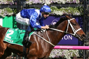 Winx, above, has drawn barrier six in the 2018 Cox Plate at The Valley. Photo by Ultimate Racing Photos.