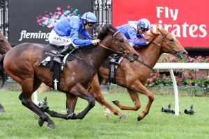 Nomothaj and Rainier fought out the finish in the Maribyrnong Trial Stakes. Photo by: Ultimate Racing Photos