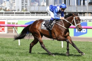 Hugh Bowman, above on Winx, will appeal two careless riding suspensions in a bid to ride her in the Apollo Stakes at Randwick. Photo by Ultimate Racing Photos.