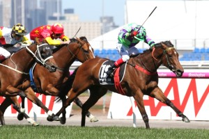 I Am A Star became the first three-year-old to win the Group 1 Myer Classic at Flemington. Photo: Ultimate Racing Photos
