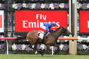 Ambience, above, is one the main chances for the Queensland Oaks at Eagle Farm. Photo by Ultimate Racing Photos.