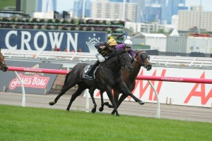Excess Knowledge survived a late charge from Zanteca to win the 2015 Lexus Stakes. Photo: Steve Hart