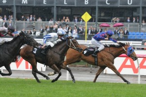 Patch Adams (far left) will return to racing in Saturday's Manfred Stakes at Caulfield. Photo: Ultimate Racing Photos