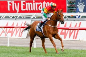 Happy Trails will enjoy the return to Flemington Racecourse in Saturday's Group 1 Australian Cup.