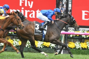 Demonstrate easily won the Lavazza Prontissimo at Flemington this afternoon. Photo: Steve Hart