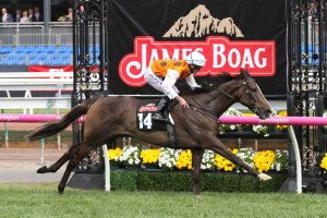 Fabrizio stormed home to win the Listed James Boag's Premium Stakes. Photo: Ultimate Racing Photos