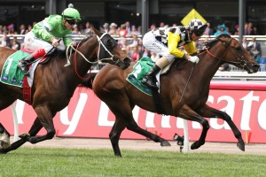 James Cummings is pleased with Zarzali ahead of Saturday's Matriarch Stakes at Flemington. Photo: Ultimate Racing Photos