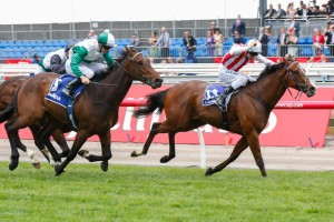 General Groove (inside) is looking for three straight wins to end his spring campaign on Saturday in the Sandown Stakes.