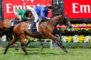 Hijack Hussy will run in the Vo Rogue Plate as a lead-up to the Magic Millions 3YO Guineas.