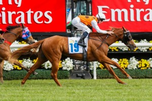 Mahara (inside) will definitely run in the Villiers Stakes despite heavy ground.