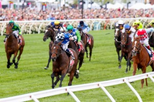 Melbourne Cup hero Protectionist has been confirmed in the 2015 Sydney Cup final field. Photo: Sarah Ebbett