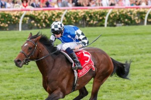 Protectionist will have to overcome a wide start from the outside gate in the Group 1 The BMW.