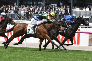Luvaluva, above in blue and green colours, will now head to the VRC Oaks after wining the Wakeful Stakes at Flemington. Photo by Steve Hart.