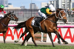 All Our Roads, above with green cap, was 4th behind Shillelagh in the Kennedy Mile at Flemington. Photo by Ultimate Racing Photos.