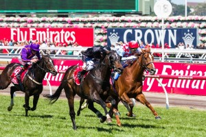 Red Cadeaux (inside) took away his third second in the 2014 Melbourne Cup.