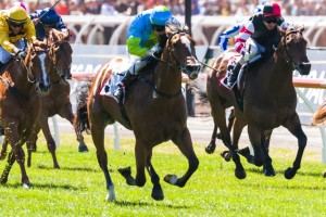 Oakleigh Girl made her racing debut with a most impressive victory in the 7News Stakes at Flemington on Melbourne Cup Day.