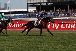 Salon Solider recorded two wins from two starts in Australia but passed away from a ruptured cecum last night.