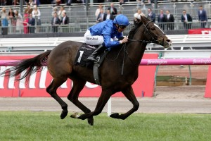 Francis Of Assisi, above, runs away to score a ten lengths win in the Queen Elizabeth Stakes at Flemington. Photo by Steve Hart.