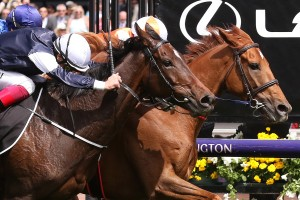 Vow And Declare, chestnut horse with orange and white colours, holds on to win the 2019 Melbourne Cup at Flemington.