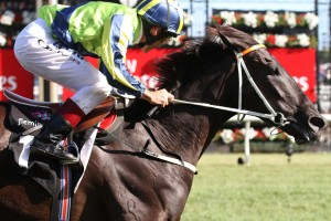 Lucia Valentina breaks a long run of outs to win the Matriarch Stakes at Flemington. Photo by Ultimate Racing Photos.