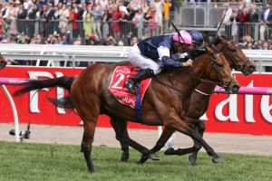 Rekindling and Johannes Vermeer fought out the finish in the 2017 Melbourne Cup. Photo by: Ultimate Racing Photos
