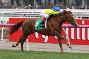 Tahanee, above, is the new favourite for the Matriarch Stakes at Flemington. Photo by Ultimate Racing Photos.