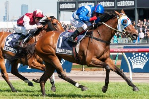 Dear Demi will resume in this weekend's Group 3 Cockram Stakes