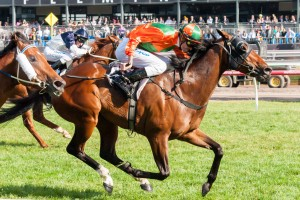 General Truce has been ignored by punters in 2014 W.J. Adams Stakes betting markets.