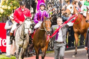Boban made it a perfect five from five during the 2013 Spring Racing Carnival with a brave win in the 2013 Emirates Stakes.