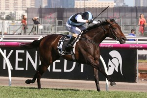 Pinot, above, wins the VRC Oaks at Flemington. Photo by Ultimate Racing Photos.