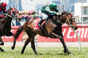 Sertorius is betting favourite to take out the 2013 Queen Elizabeth Stakes.