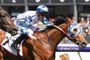 Kenedna, above, squeezes through in between runners to win the 2018 Matriarch Stakes at Flemington. Photo by Ultimate Racing Photos.