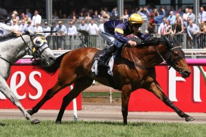 2017 Queen Elizabeth Stakes Results: Melbourne Cup The Long-Term Goal For Vengeur Masque