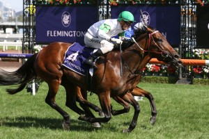 Whispering Brook, above, is the favourite for the Australia Stakes a The Valley. Photo by Ultimate Racing Photos.