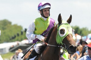 Noel Callow will take the ride on Shadow Prince in this afternoon's Tasmanian Derby. Photo: Steve Hart