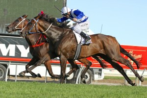 Magic Millions Class 6 Plate winner Real Time will return to Melbourne for a spring campaign.