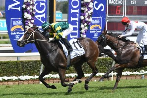 Winter Group 1s Call Magic Millions Cup Winner Care To Think