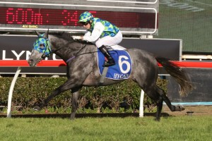 Coolring led from start to finish in this afternoon's Prime Minister's Cup on the Gold Coast. Photo: Daniel Costello