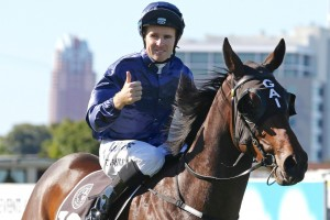 Tommy Berry, above, rode Cellsabeel to victory at Rosehill. Photo by Photo by Daniel Costello..
