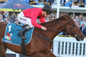 Tattersall's Tiara betting tips at Ladbrokes.com.au