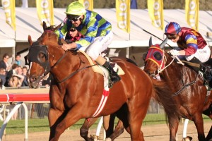 Conservatorium headlines the City Of Marion Stakes nominations.