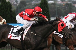 Regan Bayliss (pictured here on Beliveau) will ride Fifty Eight Facets in the Hobart Guineas.