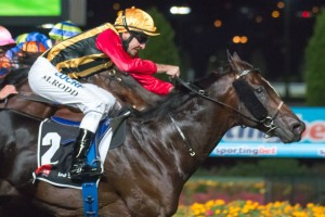 Spirit Of Boom is a leading chance for success in the 2014 Stradbroke Handicap
