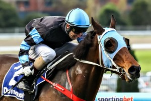 Mystic Journey keeps the punters happy with Fillies Classic win