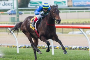 Girl Guide has been confirmed in the 2015 Geoffrey Bellmaine Stakes final field. Photo: Race Horse Photos Australia