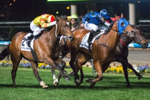 Buffering (centre, blue silks) and Lankan Rupee (outside) will face off for the third time in the Manikato Stakes this Friday night.